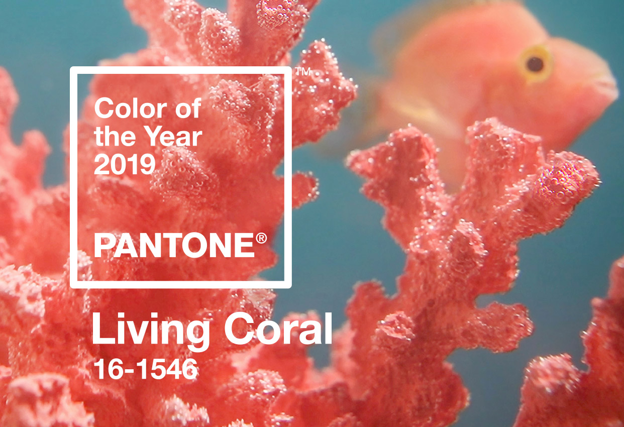 Pantone chose this 'life-affirming' shade as 2019's Color of the Year