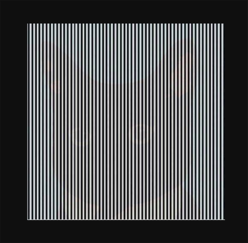 Shake your head to see these images