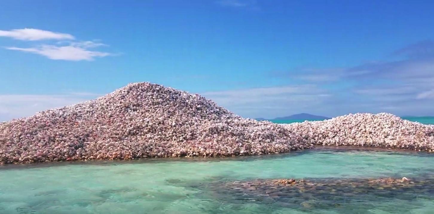 """Conch island"" formed by fishermen discarding shells"