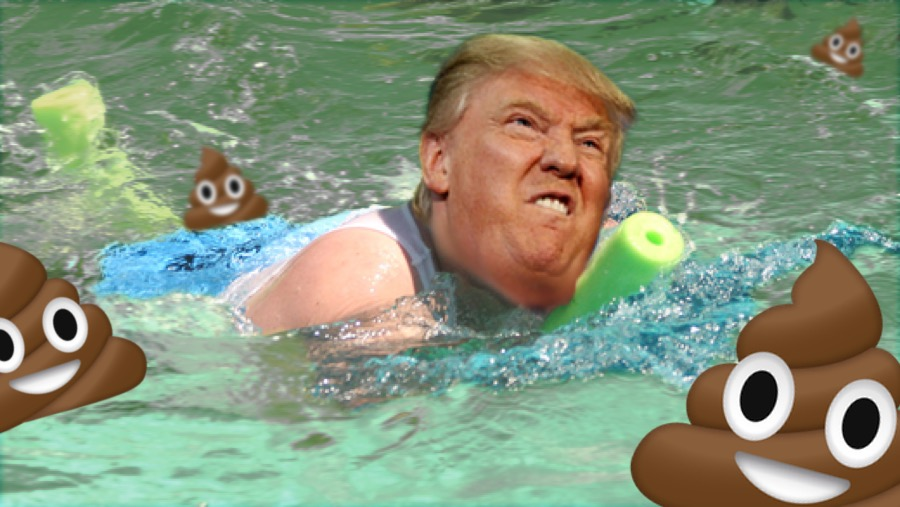 Image result for trump in a swimming pool picture
