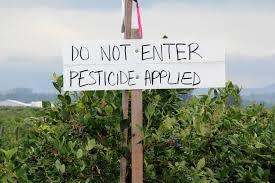 E.P.A. won't ban chlorpyrifos pesticide that scientists say damages children's brains