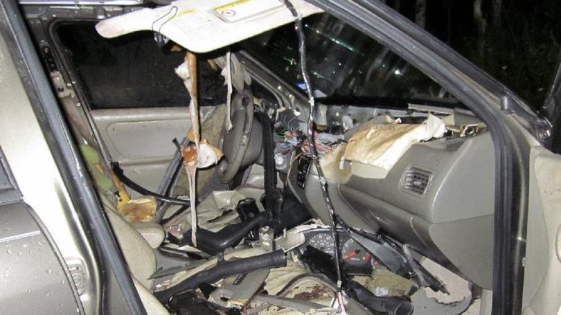 Bear trashes car after locking self inside [PHOTOS]