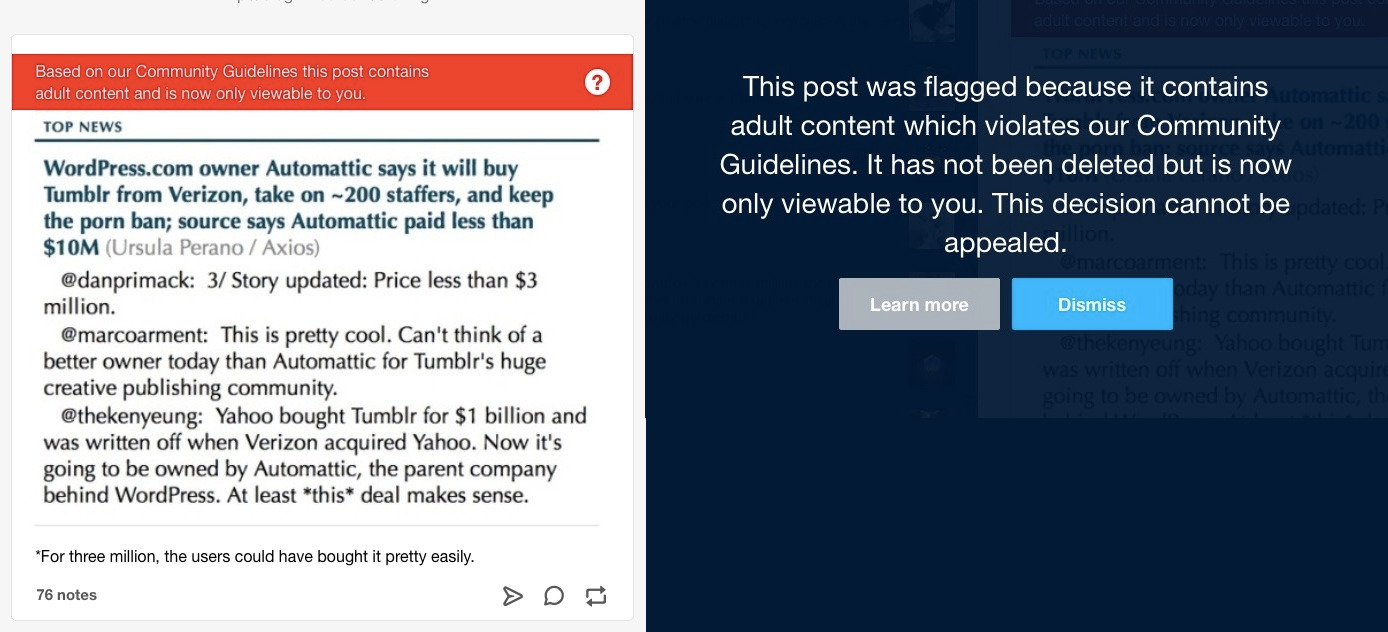 "Announcement of Tumblr's sale to WordPress classified as pornography by Tumblr's notorious ""adult content"" filter"